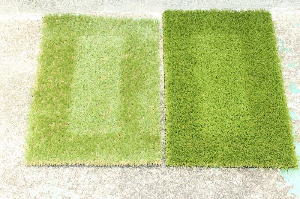 重りをどけた人工芝の跡の比較