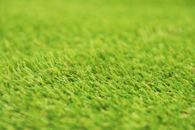 人工芝アップのイメージ