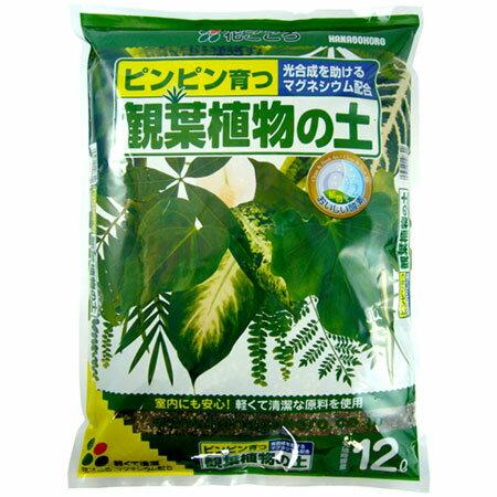 培養土 観葉植物の土 12L